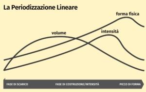 periodizzazione lineare