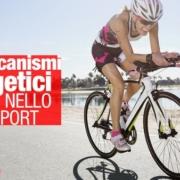 meccanismi energetici nello sport