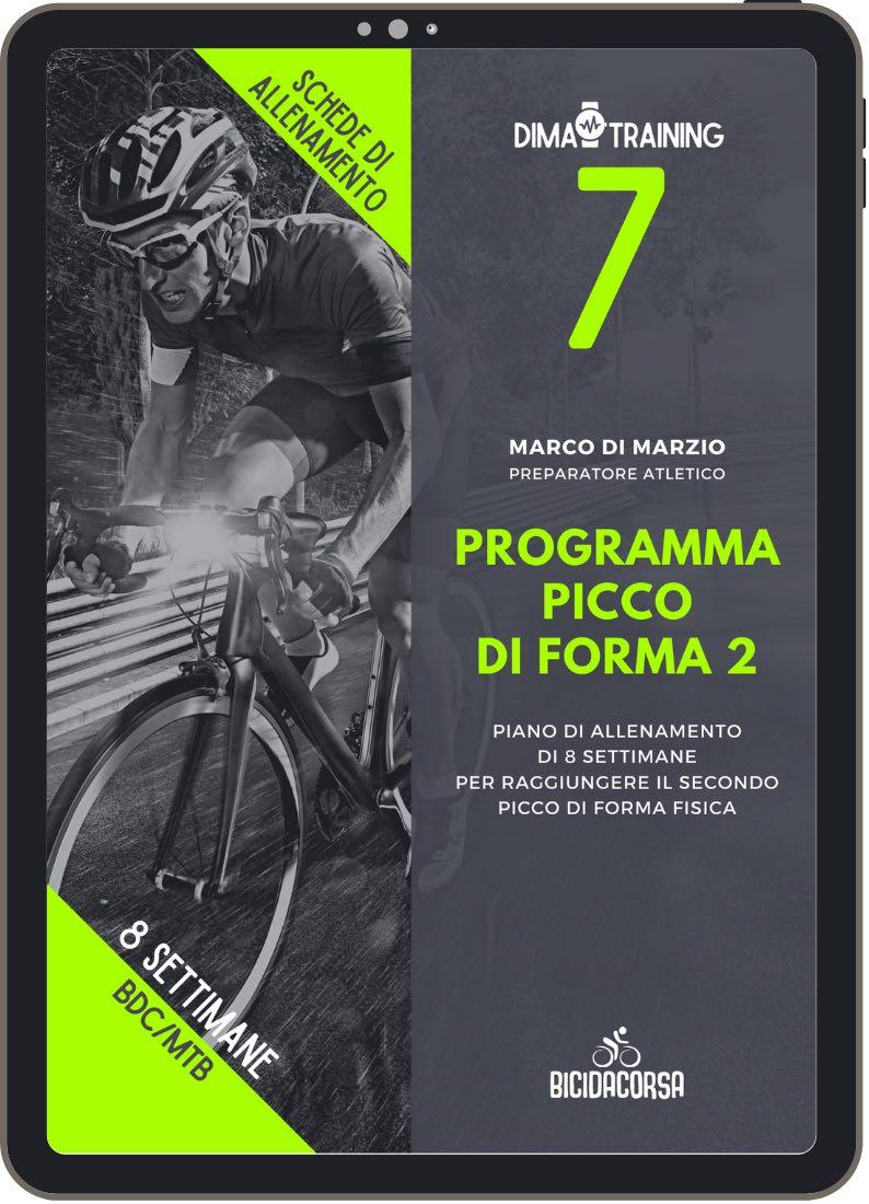 programma picco 2